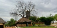 Natural Lodge 1