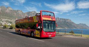 Activités à Cape Town