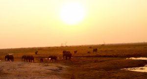 Coucher soleil botswana